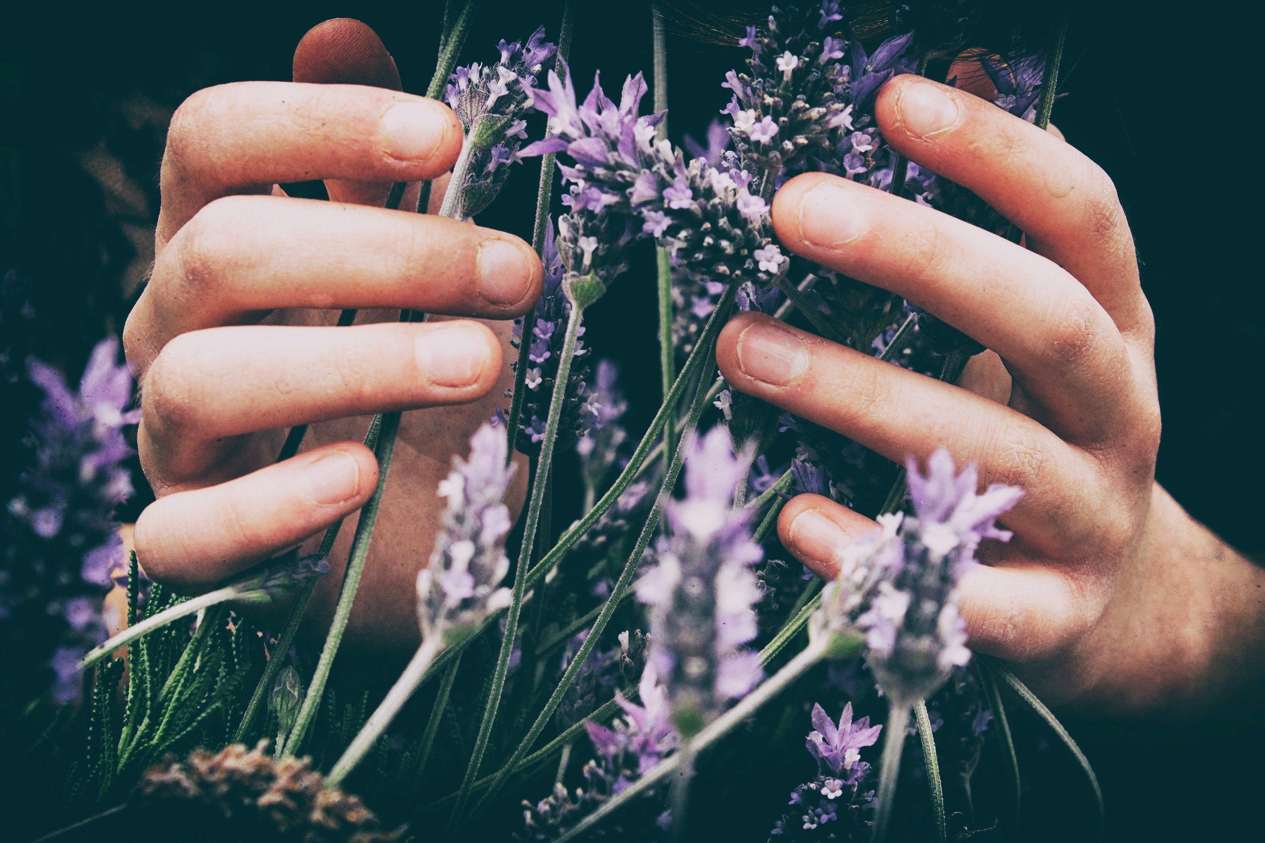 Photo by Vero Photoart on Unsplash